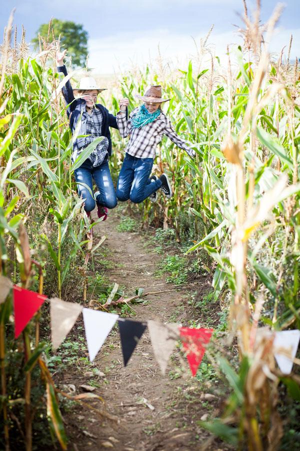 Gimtadienis kukurūsų lauke