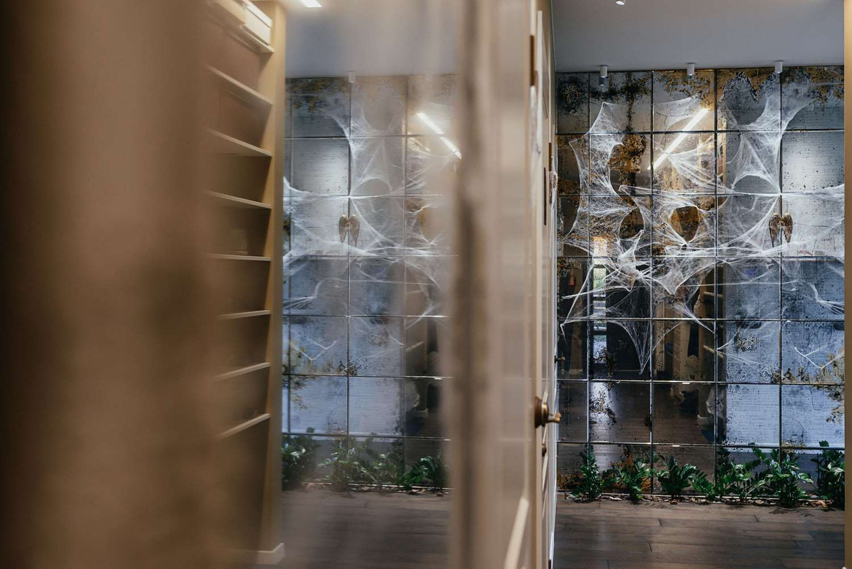 Voratinklio tinklu dekoruoti namai Holovynui